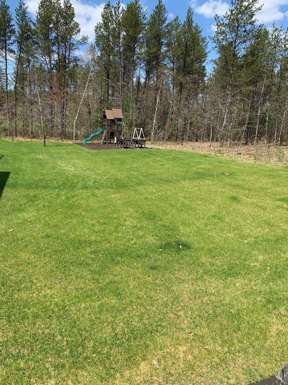 Kevins lawn 1