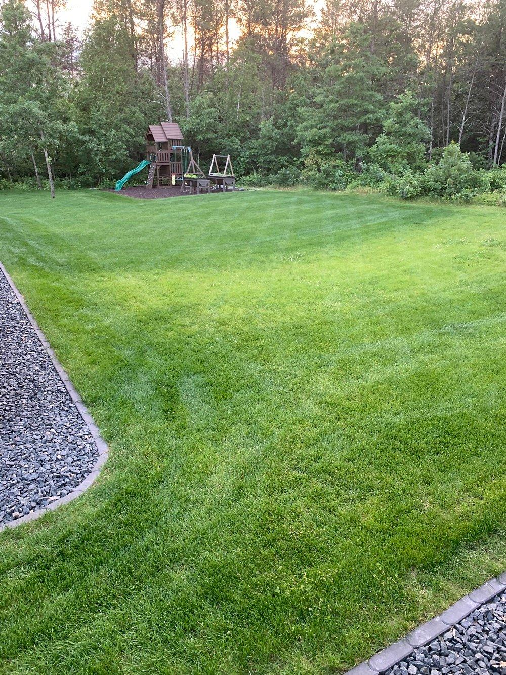 Kevins lawn 2