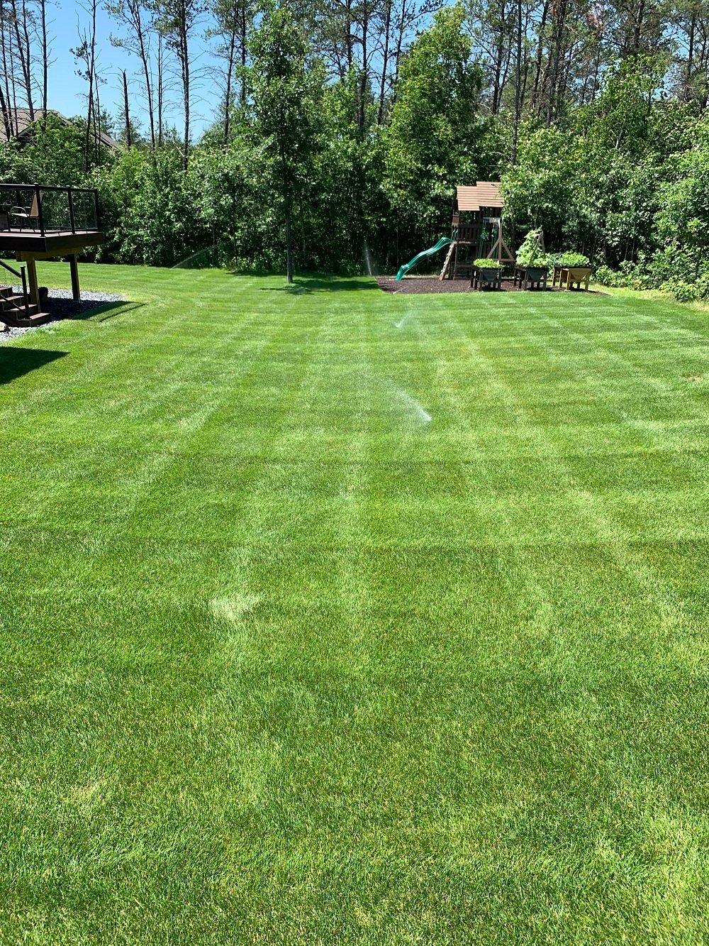 Kevins lawn 3
