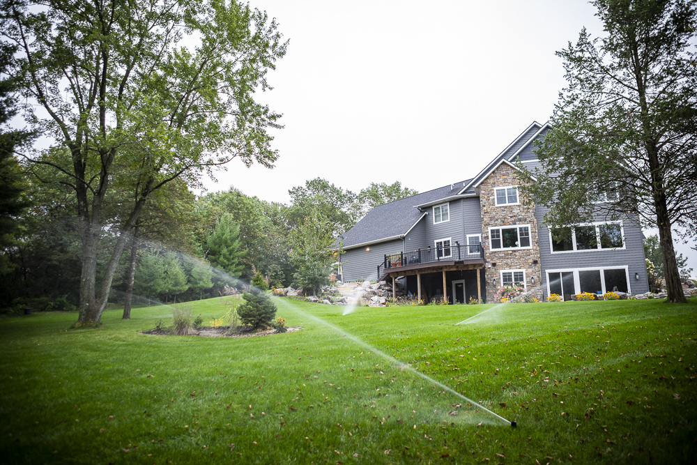 Lawn irrigation to prevent weeds