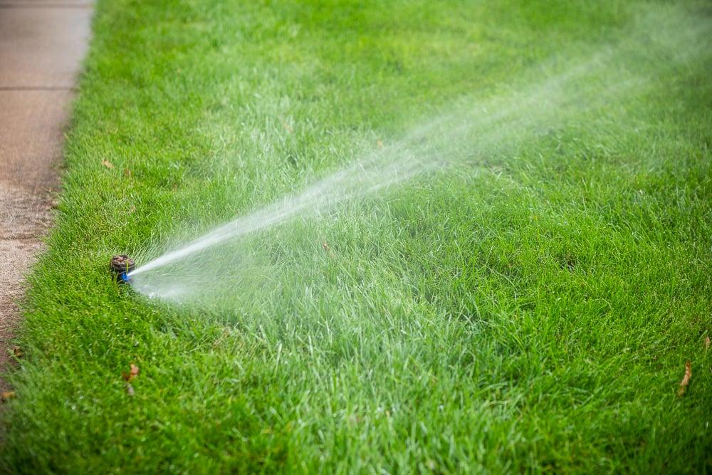 lawn irrigation sprinkler head