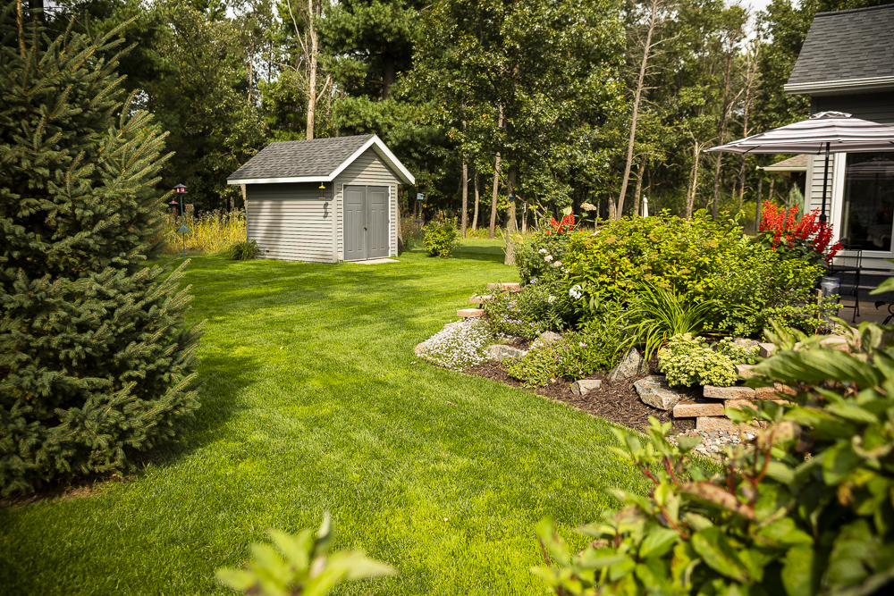 shady lawn and landscape