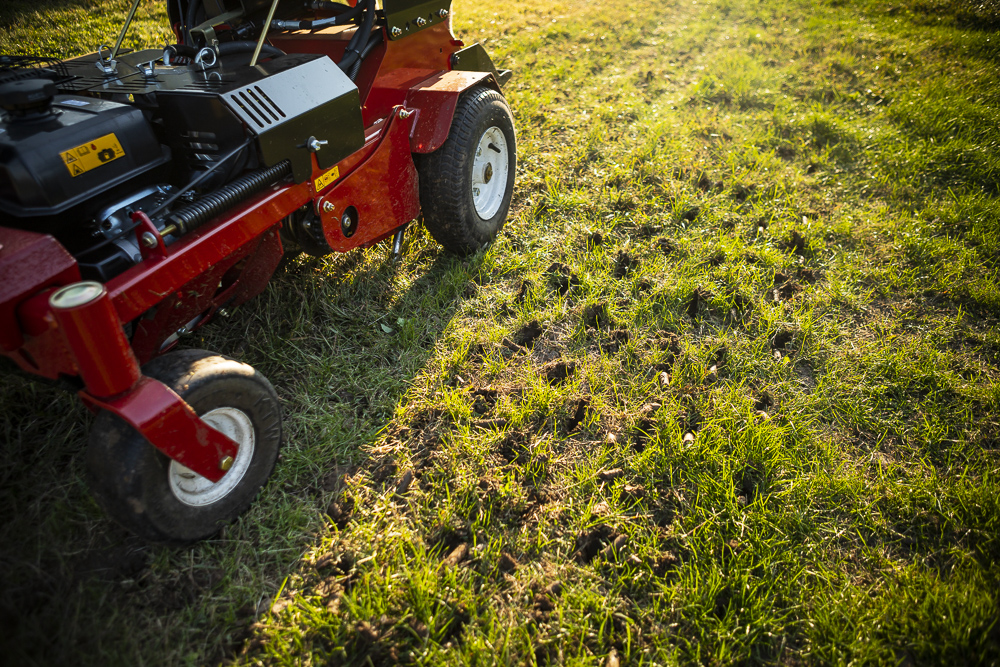 Aeration and overseeding in late August