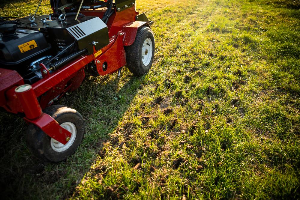 lawn team aerating a lawn