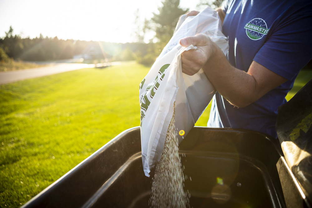 Granular lawn fertilizer
