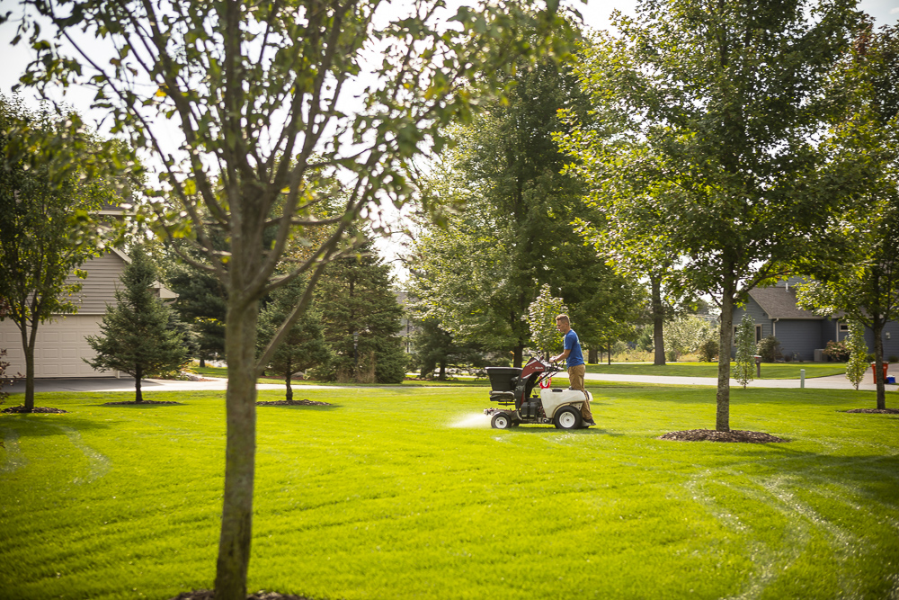 lawn weed pre-emergent application