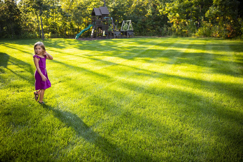 yard-grass-sun